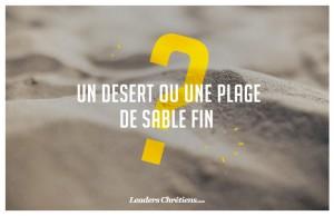 decembre-un-desert-ou-une-plage-de-sable-fin-site